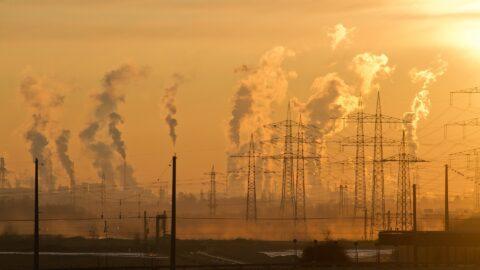 Reati ambientali il Comune puo costituirsi parte civile